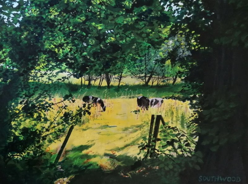 Cattle grazing in a sunny meadow. Acrylics on paper - 24 x 32 cm